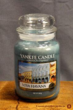 Viva Havana YK