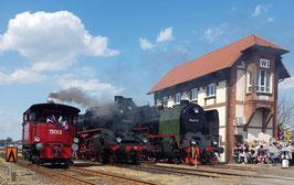 Wolsztyn – die große Dampflokparade in Polen - die besondere GRUPPENREISE 3 TAGE