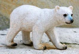 """""""Polarbär Junior"""""""