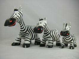 Zebra S,M oder L