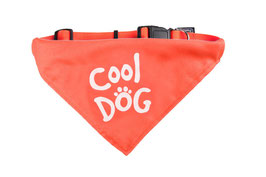 Bandana Cool Dog
