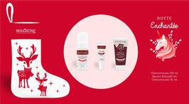 Botte de Noël  Enchantée Nougatine 3 produits