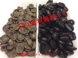 カフェインレス モカシダモ(生豆100g 焙煎後80g前後です)