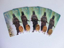 5 cartes La Vierge Noire