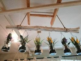 Dekoleiste mit 6 Dekogläsern mit künstlicher Frühlingsdeko