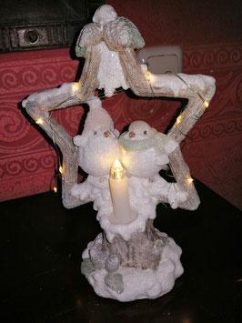 Wintervogelpaar mit Mütze und Schal mit LED-Licht
