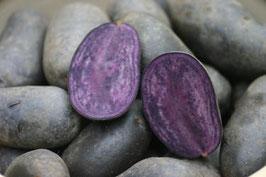 Trüffelkartoffel Violetta