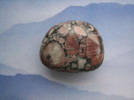 Jaspis - Turitella-Jaspis Trommelstein 30 x 25 mm