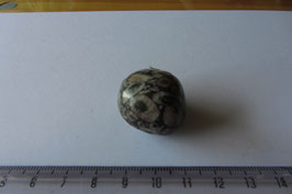 Jaspis - Turitella-Jaspis Trommelstein 24 x 23 mm