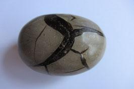 Septarie  Septrain Geode schwarz 60 x 42 x 45 mm