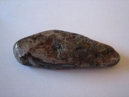 Versteinerte Koralle Trommelstein 51 x 18 mm