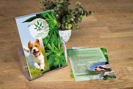 Green Health Flyer