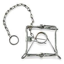 Conibear trap (13x13)