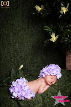 Blumen Set flieder