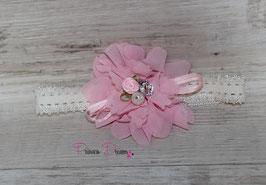 HB631 rosa