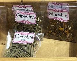 Ginestra - (bustina Erba Magica)