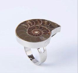 Ammonite Anello regolabile