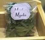Menta - (bustina Erba Magica)