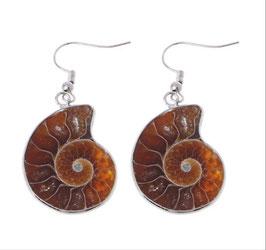 Ammonite Orecchini