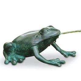 Bronzewasserspeier Frosch MAURICE