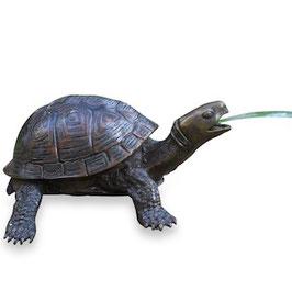 Bronzewasserspeier Schildkröte DAISY