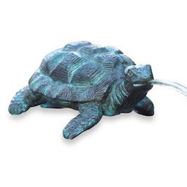 Bronzewasserspeier Schildkröte SHELLY