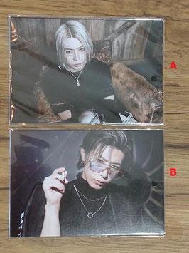 SHIN - Postcard-Set