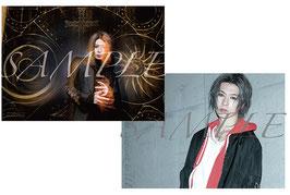 SHIN - Poster-Set