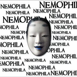 NAZARE - NEMOPHILA