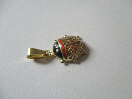 Coccinella o scarabeo smaltato