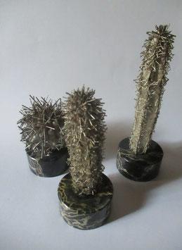 Cactus in argento