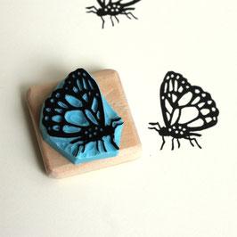 Tampon papillon