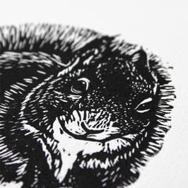 Gravure sur bois l'Ecureuil