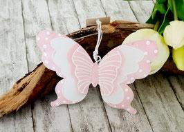 Schmetterling Rosa oder grün
