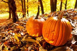 Frau Dufte® 9 Dufte Momente® Herbsttraum