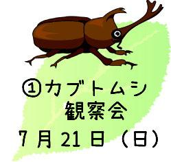 ①カブトムシ観察会