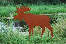"""Elch """"moose"""" 50 cm"""