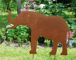 Elefant, Rüssel oben