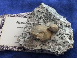 50.02 Briefbeschwerer aus Stein