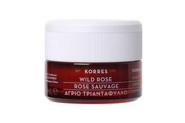 Wild Rose - Regenerierende Nachtcreme für strahlenden Teint und erste Falten 40ml