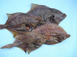 1000 g SEEZUNGE / FLUNDER getrocknet / Trockenfisch