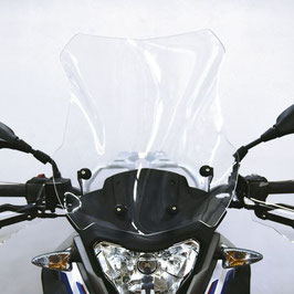 Windshield BMW G 310 GS