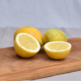 Zitronen, unbehandelt - 2 Stück