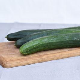 Salatgurke - 1 Stück