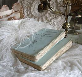 Alte französische Bücher - traumhaft