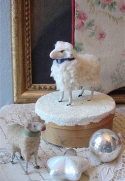 RAR: Altes süßes Wollschaf auf Spandose