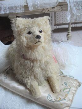 RAR: Antiker Pyjama Hund Loulou Frankreich