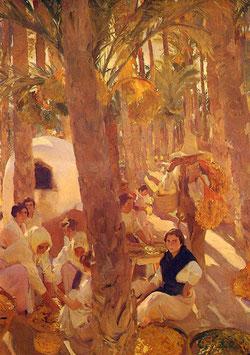 El palmeral - Elche