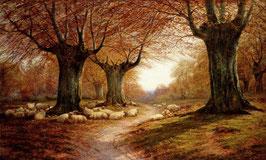 An Autumnal Landscape