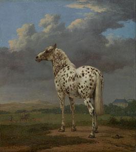 The Piebald Horse